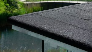 Felt Roofing Norwich